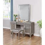 Leighton Metallic Mercury Beveled Vanity Mirror-4