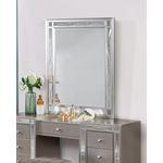 Leighton Metallic Mercury Beveled Vanity Mirror-2