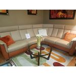 Helios Leather Sectional with Sleeper